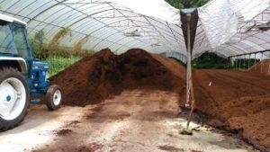 梅雨と堆肥とJun部長